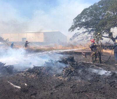 Nuevos incendios afectan cobertura vegetal de Santa Marta